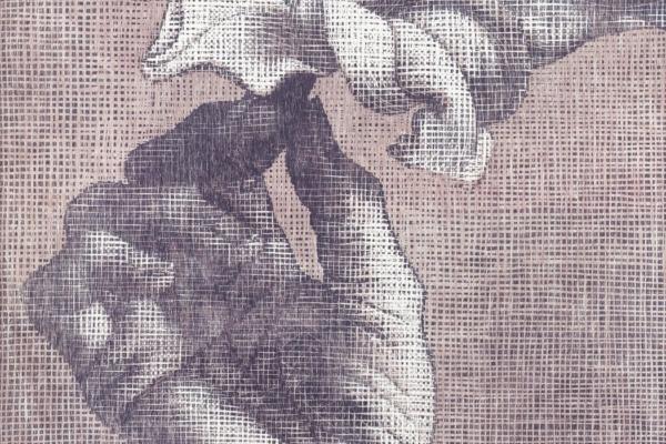 Amaryllis 2 2