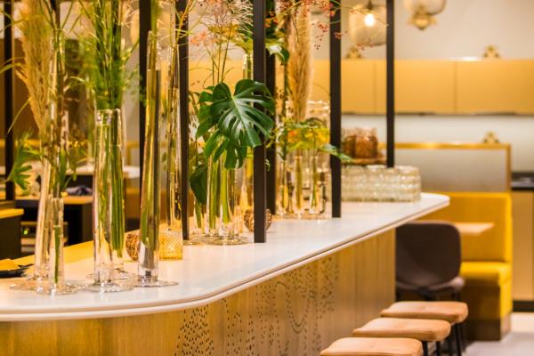 Twycer - Brasserie Rita bar DOMUSDELA